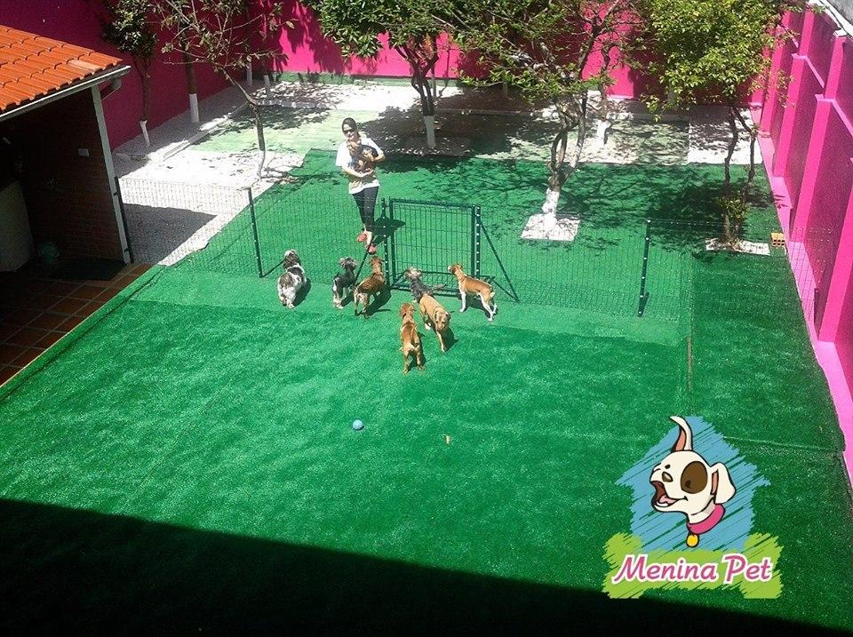 Um belo espaço com grama sintética garante a higiene dos cachorros. Foto: Facebook Menina Pet.