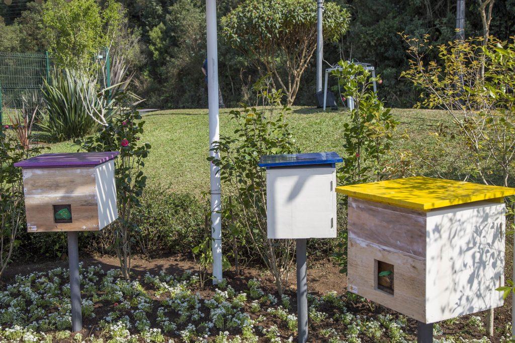 Caixas de abelha - Colmeia. Foto : Divulgação